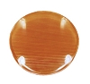 Amber Lens for Round Scare Motion Light